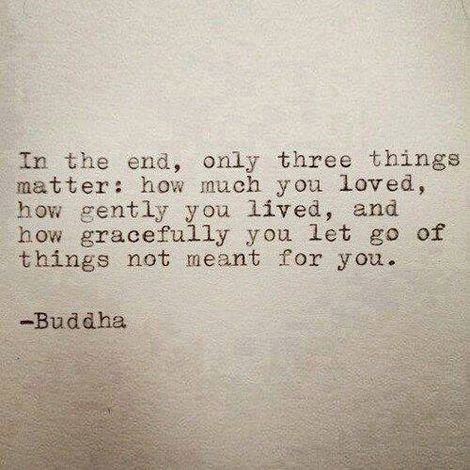 In the end, only three things matter: how much you loved, how gently you lived, and how gracefully you let go of things not meant for you. Buddah